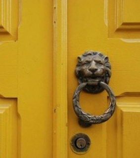 tumblr, yellow and lion