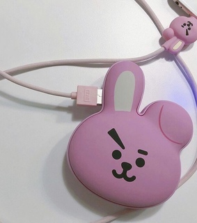 cooky, bt21 and bts