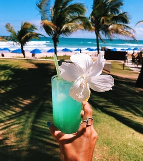 paradise, colors and summer