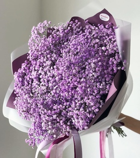 gift, inspiration and purple