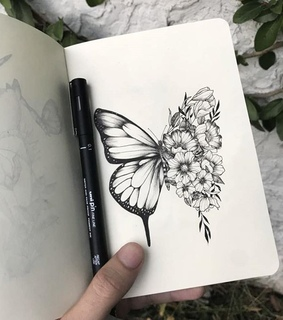 aesthetics, wings and drawings