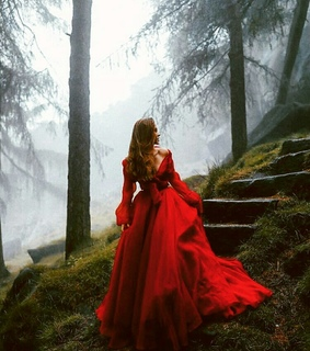 forest, lost and red
