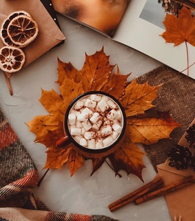decorate, picture and autumn