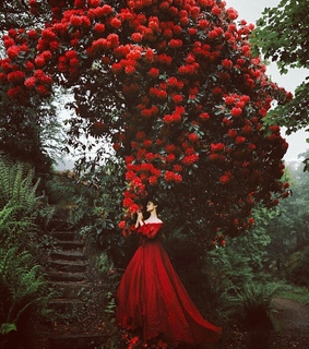 forest, flower and Queen