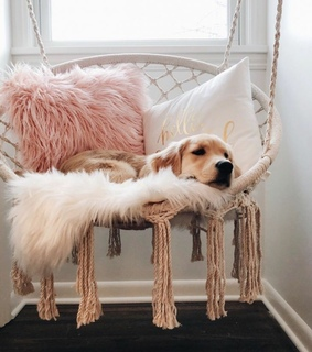 swinging chairs, boho and faux fur pillows