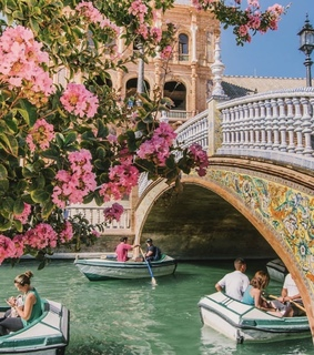 lifestyle, flowers and seville