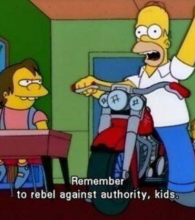 authority, the simpsons and homer simpson