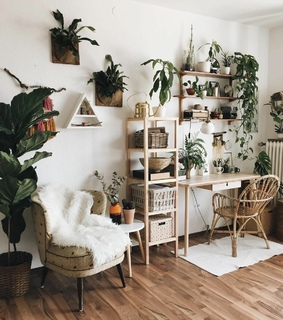 wooden, comfy and décoration