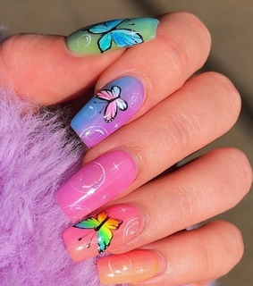 butterflies, colorful and claws