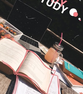 study, stories and snap