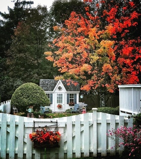 cottage garden, fall and charming