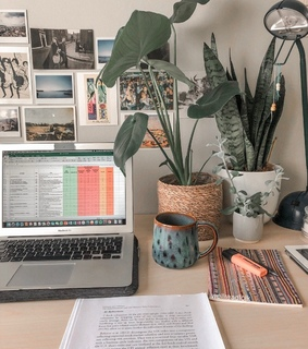 studyblr, college and motivation