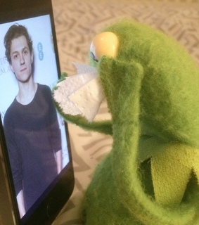 tom holland, kermit the frog and meme
