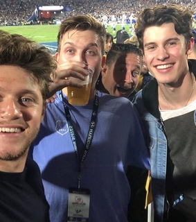 niall horan and shawn mendes