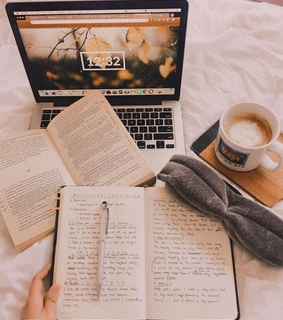books, focus and study