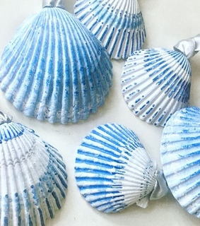 art, blue and white and seashells