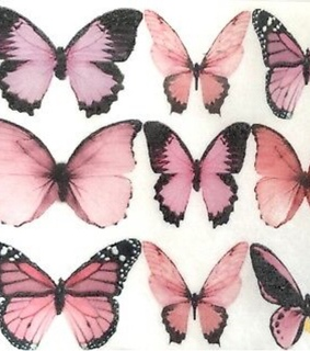 archive, butterflies and pink