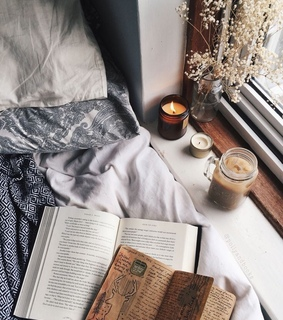 reading, books and cozy