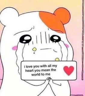 love, wholesome meme and love reaction