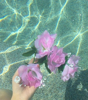 water, summer and sea