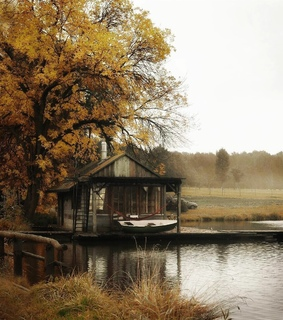 autumn, fall and home