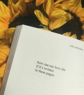 book, love and die