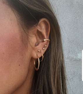 conch, earrings and gold