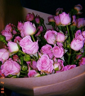 pink, rose and cute