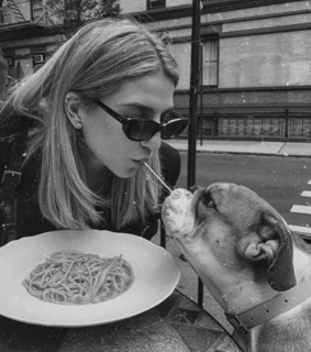 puppies, aesthetic and restaurant