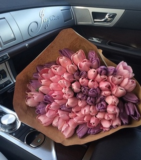 tulips, tumblr and car