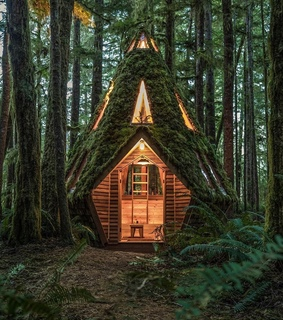 cabin, nature and house