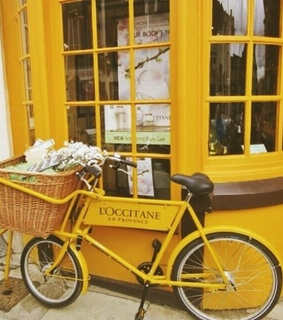bicycle, basket and shop