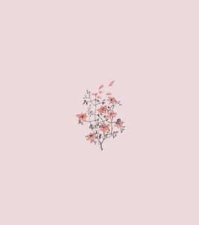 flowers, soft and lockscreen