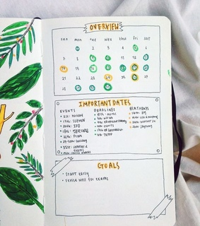 journal ideas, organization and bullet journal