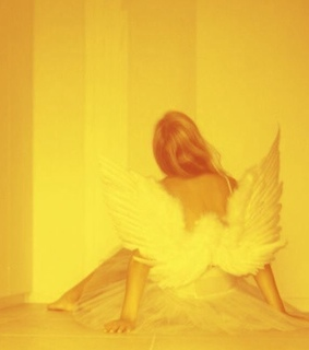 wings, yellow and room