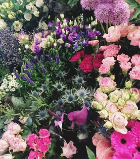 flowers and florist
