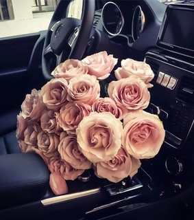 mercedes, fashion and rose