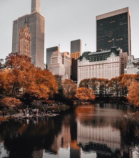 travel, new york and autumn
